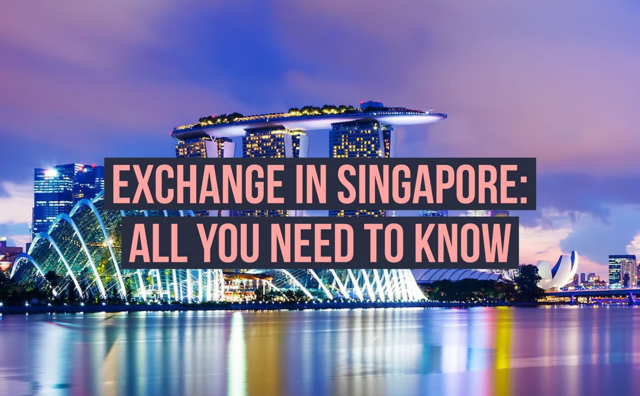 Your ULTIMATE GUIDE To An Exchange In Singapore