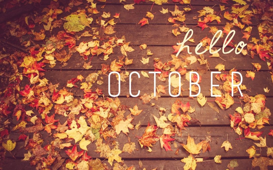3 Things To Do In October