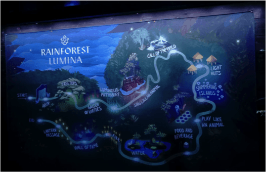 Rainforest Lumina – The experience